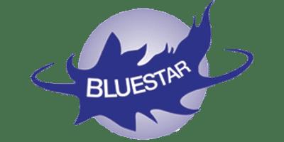 BlueStar Products Ltd.