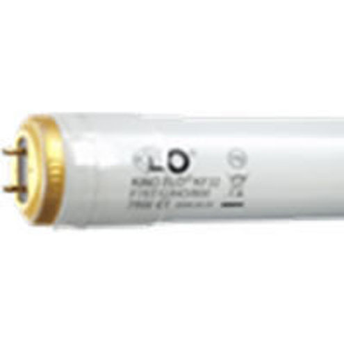 6ft Kino 800ma KF32 (2 pin) Safety Coated Lamp