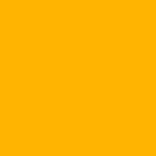 "770 Burnt Yellow Sheet 20"" x 24"""