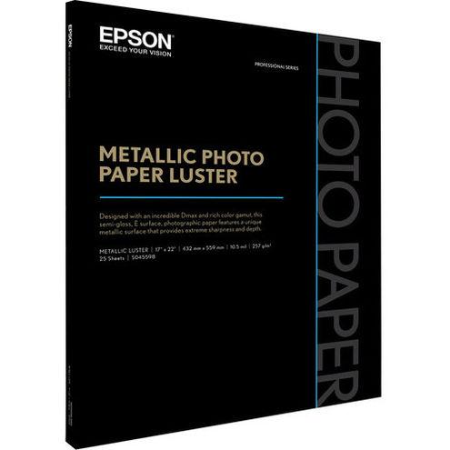 "17"" x 22""  Metallic Photo Paper Luster"