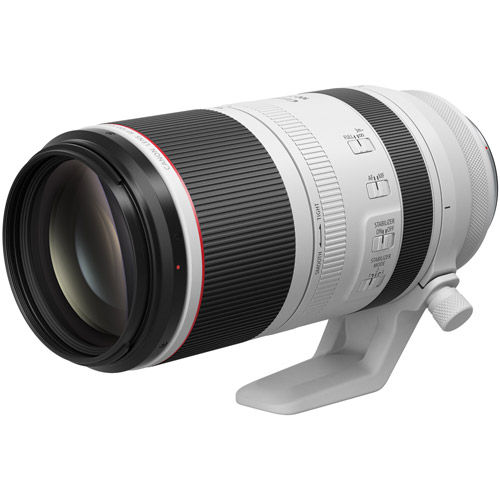 RF 100-500mm f/4.5-7.1 L IS USM Super Telephoto Lens