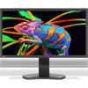 """PA311D-BK  31"""" Color Critical Desktop Display with SpectraView Engine"""